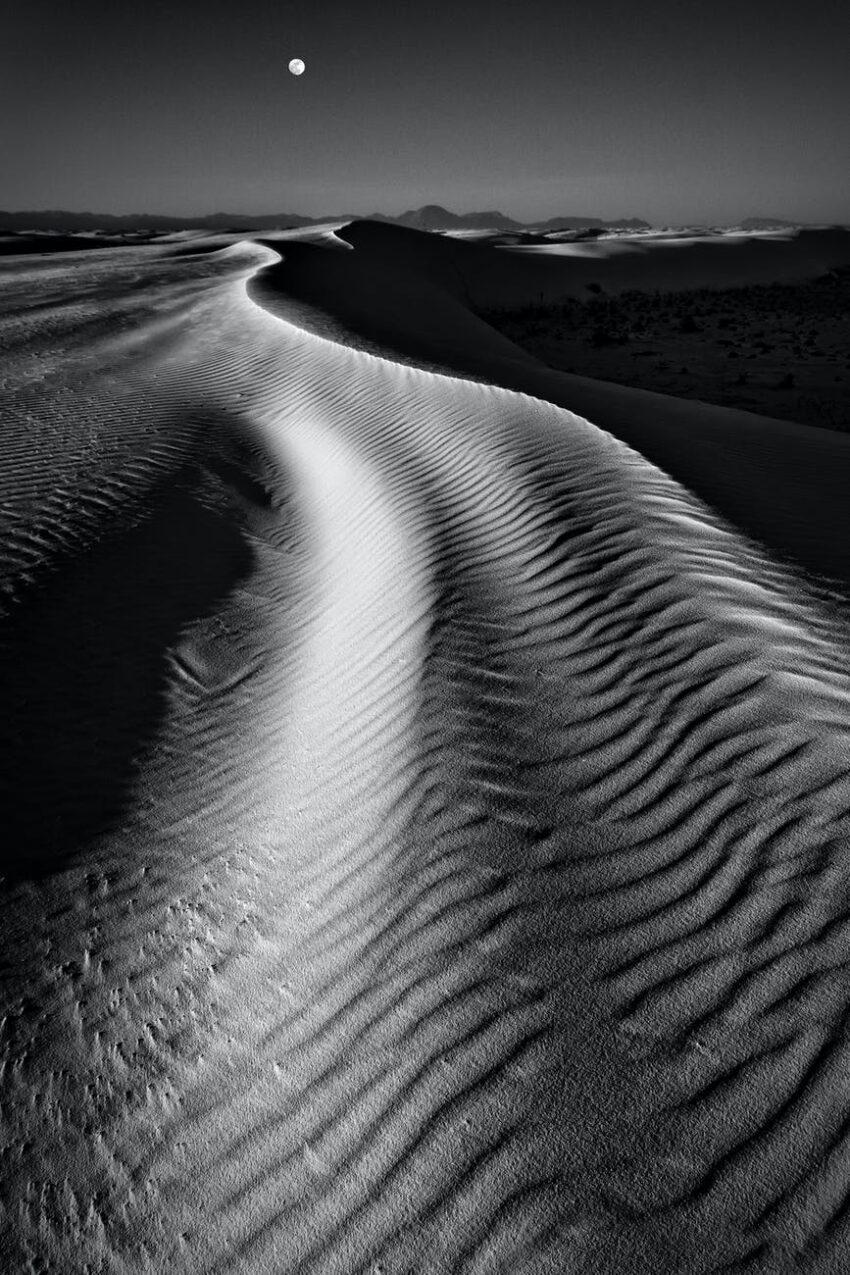 monochrome photo of desert